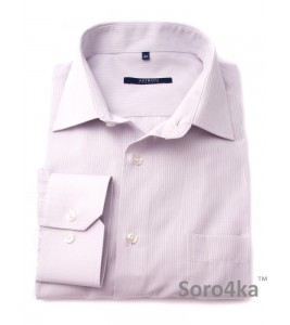 Сорочка Middle Fit Astron Purple Stripe