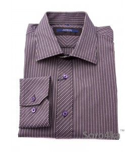 Сорочка Slim Fit Astron Dark Stripe